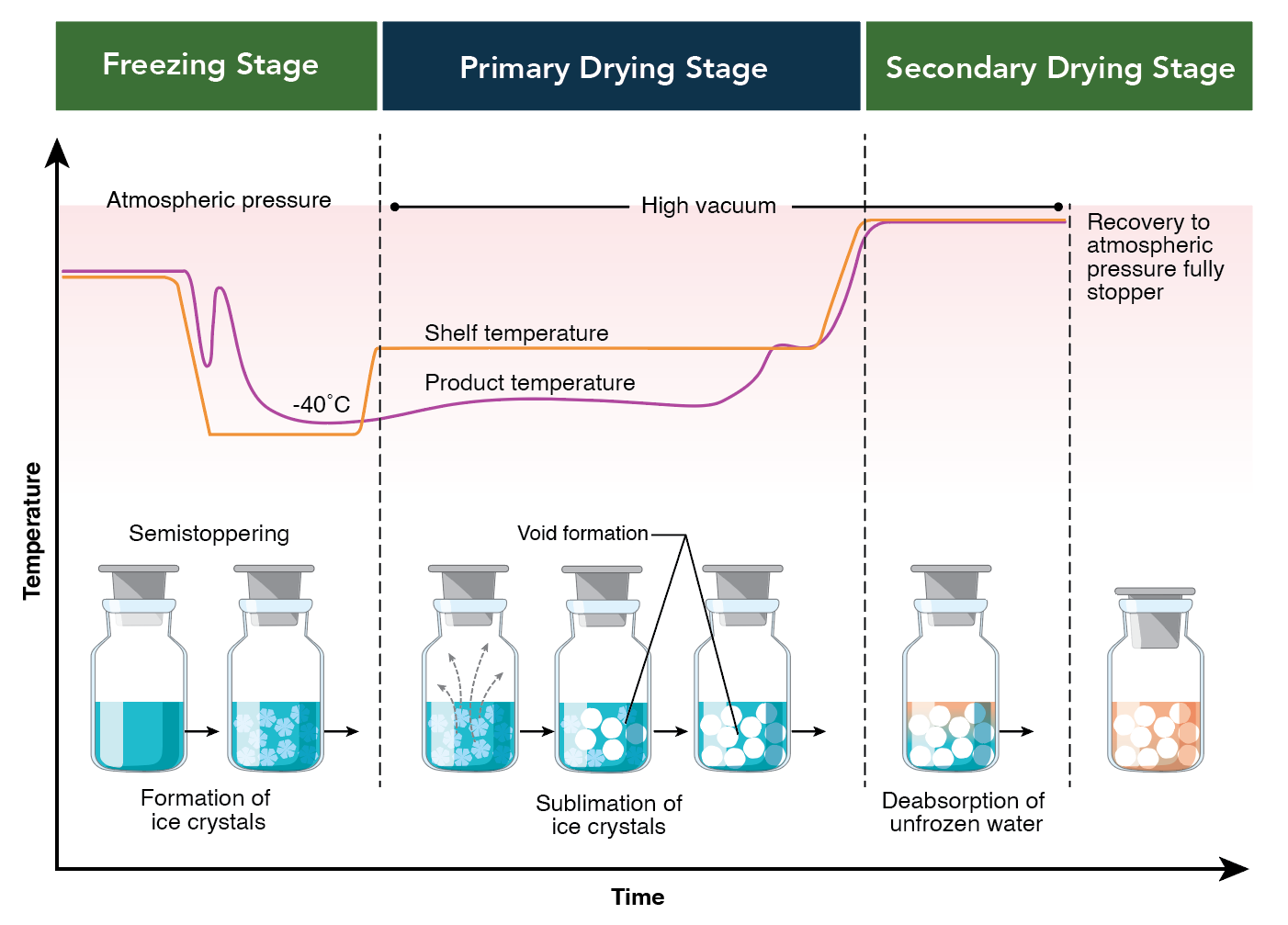 Lyophilization-Pii-Process